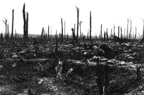 Trenches on the Web - Photo Archive: The Ypres Salient, 1917