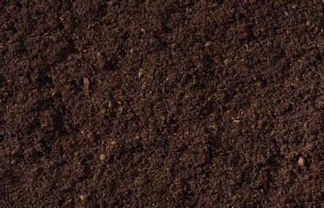 Gromor Compost: The Quality Difference at Lifestyle Home